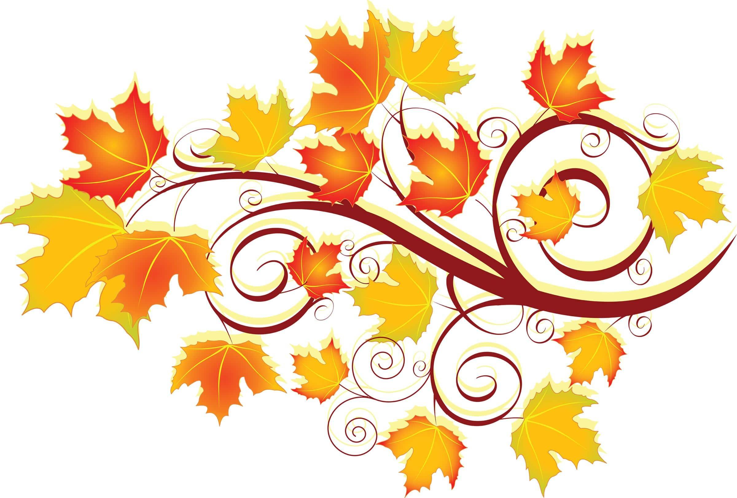 vimeo thanksgiving video