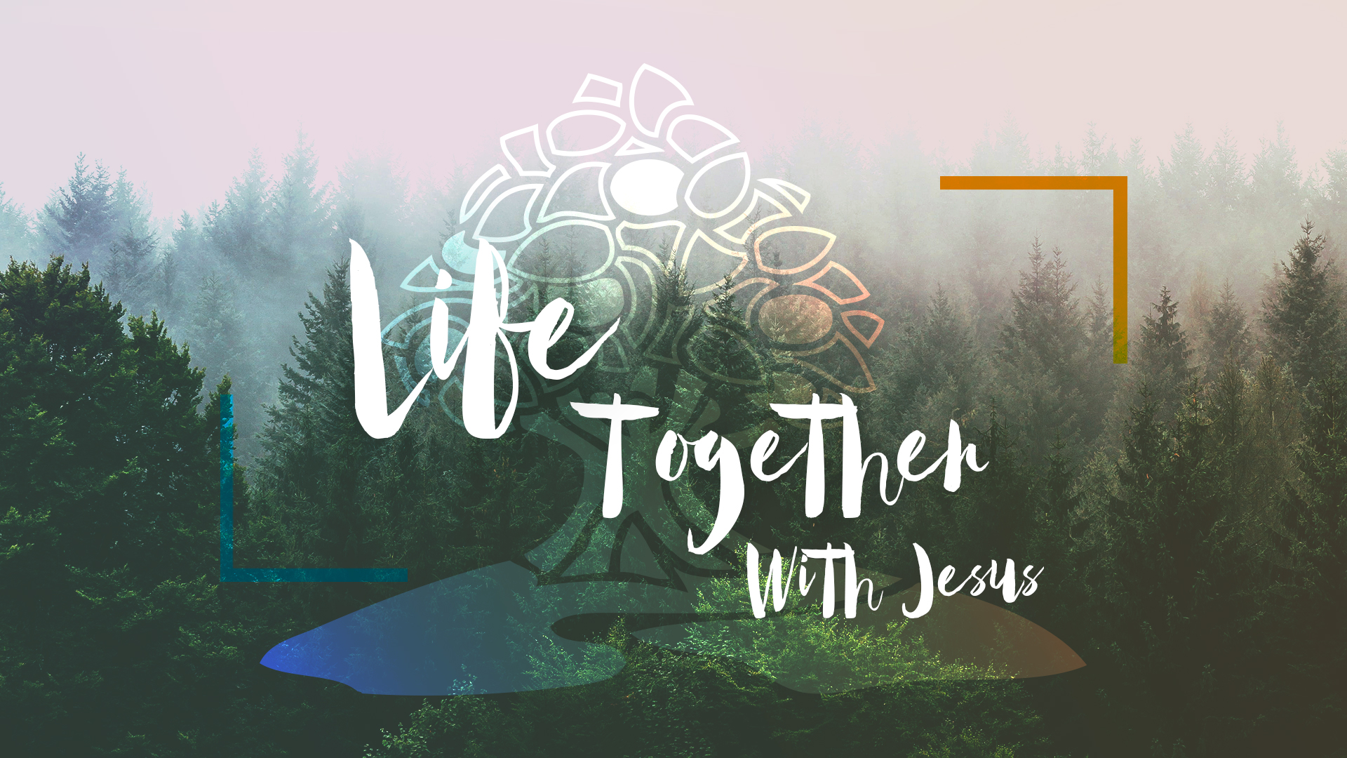 Life Together with Jesus