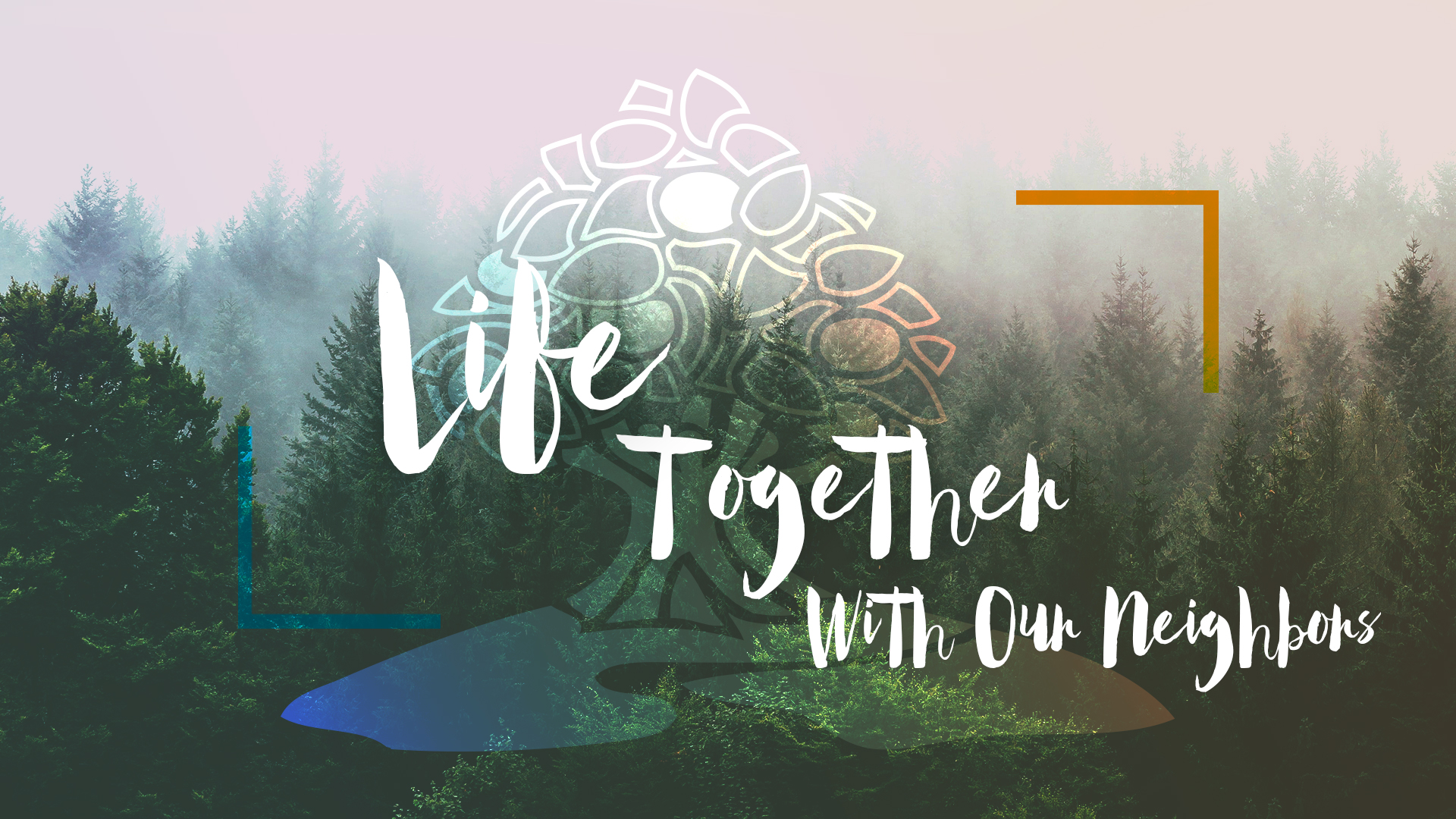 Life Together with Our Neighbors